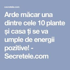 Arde măcar una dintre cele 10 plante și casa ți se va umple de energii pozitive! - Secretele.com How To Get Rid, Ayurveda, Feng Shui, Metabolism, Good To Know, Projects To Try, Spirituality, Health, Paranormal