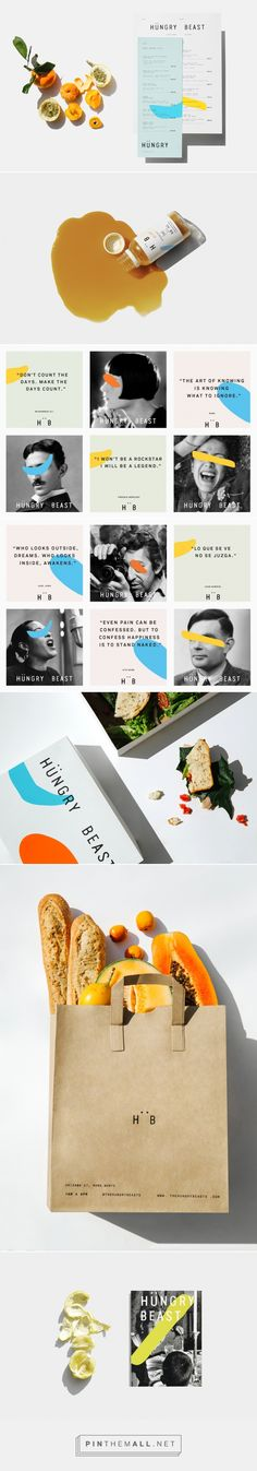 New Logo & Graphic Identity for Hüngry Beast by Savvy — BP&O... - a grouped images picture - Pin Them All