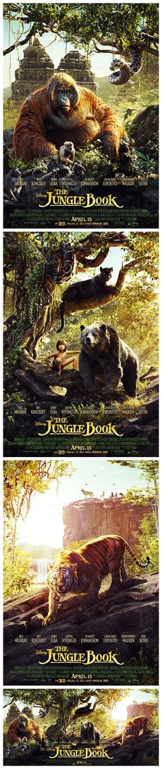 Posters for Disney's The Jungle Book (2016). In this movie, Baloo looks much more like a grizzly bear than a sloth bear.