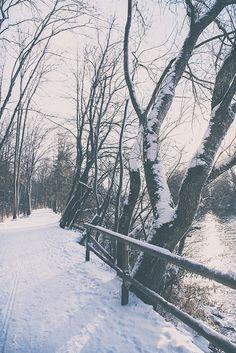 Wildpark Landsberg am Lech im Winter. Schnee