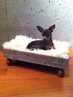 Sale  Luxury Wine Crate Pet Bed for a Dog Or Cat  by RagsIIRiches, $120.00