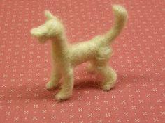 Blog sobre animales, datos curiosos de animales, vegetarianismo, humor animal.