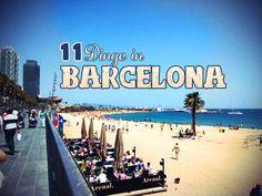 Oh, Barcelona. Welch fantastische Stadt. 48 Stunden habe ich hier verbracht. Eigentlich viel zu kurz, aber dank der Hilfe von Einheimischen konnte ich in kurzer Zeit doch recht viele Sehenswürdigkeiten sehen und erleben. Deshalb möchte ich dir hier 11 Dinge vorschlagen, die du in Barcelona meiner Meinung nach unbedingt sehen und ausprobieren solltest.