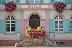 Le système scolaire français et exercice en ligne - Débutant