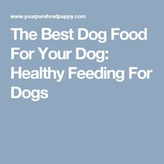 The Best Dog Food For Your Dog: Healthy Feeding For Dogs