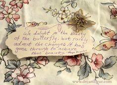 we delight in the beauty of the butterfly but rarely admit the changes it has gone through to achieve that beauty