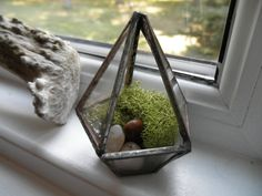 Tiny Glass Terrarium by SandhillShores on Etsy https://www.etsy.com/listing/159866711/tiny-glass-terrarium