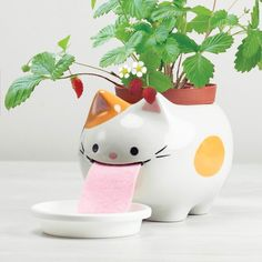 Papa+Peropon+Drinking+Animal+Planter+-+Cat+-+Turn+your+houseplants+into+a+talking+point+with+the+Papa+Peropon+Drinking+Animal+Planter+-+Cat!+This+friendly+feline+laps+up+water+through+her+felt+tongue+in+order+to+grow+the+seeds+in+her+back+into+a+tasty+wild+strawberry+plant.+Magic…