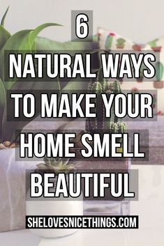 Throw out those expensive spray air fresheners! Make your home smell naturally with this simple DIY air freshener. House Cleaning Tips, Cleaning Hacks, Make Money Blogging, How To Make Money, Katie Homes, Home Scents, House Smells, Smell Good, Best Mom