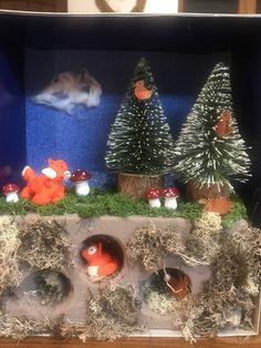 Science Fair Projects, School Projects, Fox Habitat, Shoe Box, Foxes, Curiosity, Ww2, Habitats, Cube