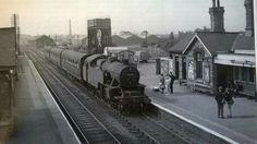 Steam Railway, British Rail, Steamers, Steam Engine, Steam Locomotive, Nottingham, Old Pictures, Tanks, Roots