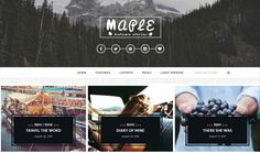 10+ Best Rated WordPress Themes with Top-Notch Support - Premium WordPress Themes, Plugi...
