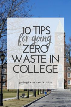 10 Tips for Going Zero Waste in College Reduce Waste, Zero Waste, Plastik Recycling, Eco Friendly Cleaning Products, Green School, Green Living Tips, Mass Communication, Always Learning, What Can I Do