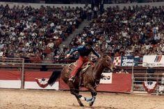 No bridle? No prob, I GOT THIS! Scamper, the best barrel horse ever born.