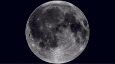 Using imagery collected by its Lunar Reconnaissance Orbiter, NASA created this gobstopping video of the Moon rotating about its axis. Gifs, Nasa, Happy Facts, Science Images, Space Photography, Rough Day, Beautiful Moon, Beautiful Sites, Moon Print