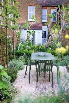 Small gardens tips - Gardens Illustrated pleached crab apples Narrow Garden, Dappled Light, Curved Walls, Top Soil, Garden Show, Small Patio, Water Lilies, Small Gardens, Clematis