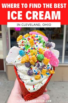 Your guide to where to find the best ice cream in Cleveland. This ice cream guide features the best locally-owned Cleveland ice cream shops, including suggestions on what to try. Use this to help plan your next ice cream outing in Cleveland! Cleveland Food, Cleveland Restaurants, Chocolate Covered Bananas, Chocolate Peanuts, Peppermint Sticks, Vegan Peanut Butter, Best Ice Cream, Soda Fountain, Blueberry Cheesecake