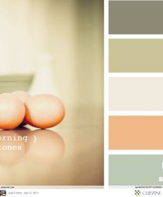 Color Palettes- new colors for my family room/kitchen?