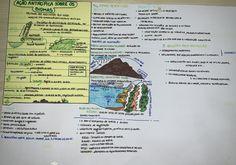 #biomas #geografia #resumo