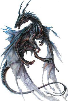 Love a Dragon