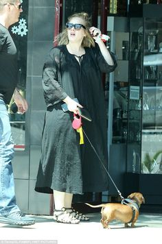 Adele with her dog, Louie, at Santa Monica, CA Adele Wallpaper, Diamante Rosa Steven Universe, Adele Love, Adele Photos, Dachshund Love, Female Singers, Natural Looks, Cute Puppies, Amazing Women