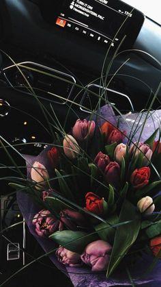Frühling Wallpaper, Rose Flower Wallpaper, Luxury Flowers, Flower Aesthetic, Aesthetic Wallpapers, Flower Arrangements, Beautiful Flowers, Nature Photography, Plants