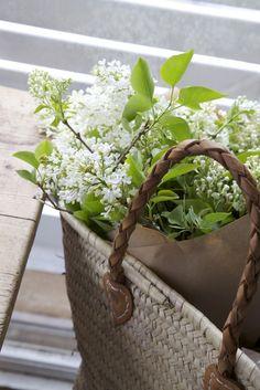 home inspiration flowers wicker basket My Flower, Fresh Flowers, White Flowers, Beautiful Flowers, Flower Basket, Bouquet Champetre, Vibeke Design, Deco Floral, Planting Flowers