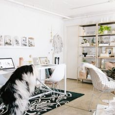 This office is full of furry little details. So Cozy! Photos by Aubrie Pick. (In Portuguese)