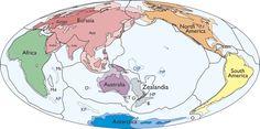 N. Zealand part of sunken 'lost continent': scientists