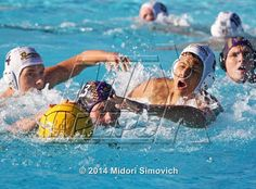 """Water Polo photo gallery """"El Camino vs. Santana (San Diego Open)"""" for El Camino high school - MaxPreps"""