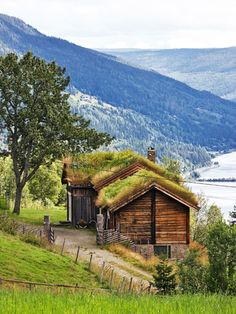 Liv and Jan Krogstad climb into their four-wheel drive and set off north on the wide, empty roads beyond Oslo towards the mountains. The drive itself is a pleasure; curving through woods of regal Norwegian pines with trunks as straight and tall as ships' masts, along the edge of glassy lakes and broad rivers, passing through tunnels in the rock, always slowly climbing, until they reach the small village where they have their country home.