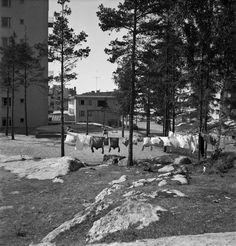 Länsi-Herttoniemi, Kettutie 4. Oikealla Hiihtomäentie. Pyykin kuivatusta kerrostalon pihalla 1955. Kuvaaja: V.S. Salokannel Lähde: Helsingin kaupunginmuseo (CC BY-ND 4.0) Snow, Outdoor, Outdoors, Outdoor Games, The Great Outdoors, Eyes, Let It Snow