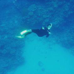 Doin' the GBR  #tourist #greatbarrierreef #snorkel #ocean #ilovefishies by mojabbi http://ift.tt/1UokkV2