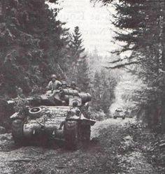"""""""Green Hell"""".The Battle of the Hürtgen Forest - M10 of 893rd Tank Destroyer Bn moves thru Hurtgen Forest (Small)"""