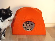 You should already have everything to make this funny cat tent. Diy Cat Tent, Dog Tent, Small Dogs, Easy Diy, Crafty, Pets, Big Project, Animals, Everything
