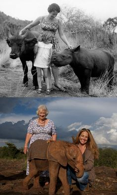 A LIFETIME DEDICATED TO SAVING WILDLIFE : The David Sheldrick Wildlife Trust (DSWT) is today the most successful orphan elephant rescue and rehabilitation program in the world and one of the pioneering conservation organisations for wildlife and habitat protection in East Africa. (Dr. Daphne Sheldrick and her daughter Angela Sheldrick.) Please Help : www.sheldrickwildlifetrust.org