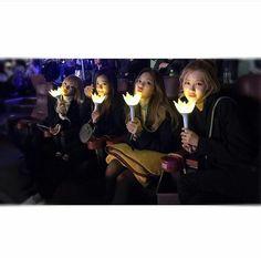 BLACKPINK 블랙핑크 at Bigbang 빅뱅 concert Jennie Lisa Rosé Jisoo ❤👑