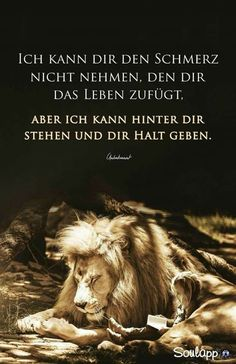 I can not poise the pain - petra müller - German Quotes, I Can Not, True Words, Petra, Grief, Proverbs, Real Life, Friendship, Wisdom