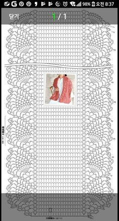 Crochet scarf pattern i couldn t find the pattern for thi – artofit Pretty lace shawl and pattern - Salvabrani Filet Crochet, Crochet Shawl Diagram, Crochet Diy, Crochet Motifs, Crochet Wrap Pattern, Crochet Chart, Crochet Doilies, Crochet Patterns, Crochet Stitches