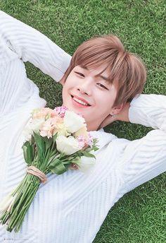 Wanna-One - Kang Daniel Daniel 3, Prince Daniel, Jinyoung, Kdrama, Park Hyung, All Meme, Produce 101 Season 2, Kim Jaehwan, Ha Sungwoon