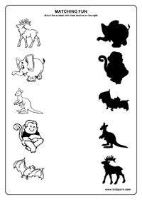 Animals Worksheets,Matching Worksheets for Kids,Kindergarten Curriculam