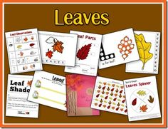 Leaves Unit - seriously awesome, just what I've been looking for for pre-k and a little for my 1st grader!