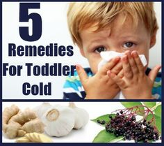 5 Effective Herbal Remedies For Toddler Cold