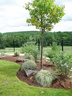 Simple Low Maintenance Front Yard #landscaping Ideas (53) #LandscapeFrontYard #LowMaintenanceLandscaping