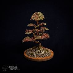 Unique Wire Tree Sculptures – Wire Tree Sculptures made by Matthew Gollop Bonsai Styles, Wire Tree Sculpture, Wire Trees, Red Felt, Brown And Grey, Copper, Metal, Gold, Accessories
