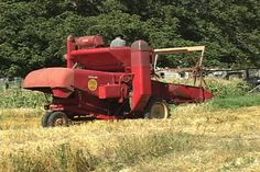 Antique Massey Harris Combine | Antique Tractors - 1952? Massey Harris 15 Clipper Combine