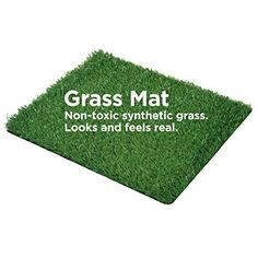 Artifitial Grass for Dogs Pet Training Pads Replacement Grass Mat 28x40 by Synturfmats *** Check out the image by visiting the link.