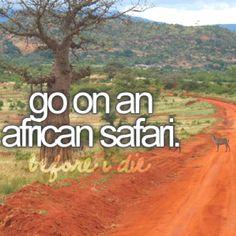 african safari - DO IT!