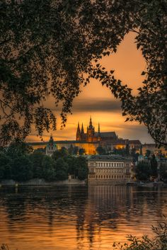 Only in Prague can you have a moment like this. More