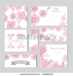Elegant cards with decorative orchid flowers, design elements. Can be used for wedding, baby shower, mothers day, valentines day, birthday cards, invitations, greetings. Vintage decorative flowers. - stock vector
